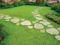 Красивая садовая дорожка